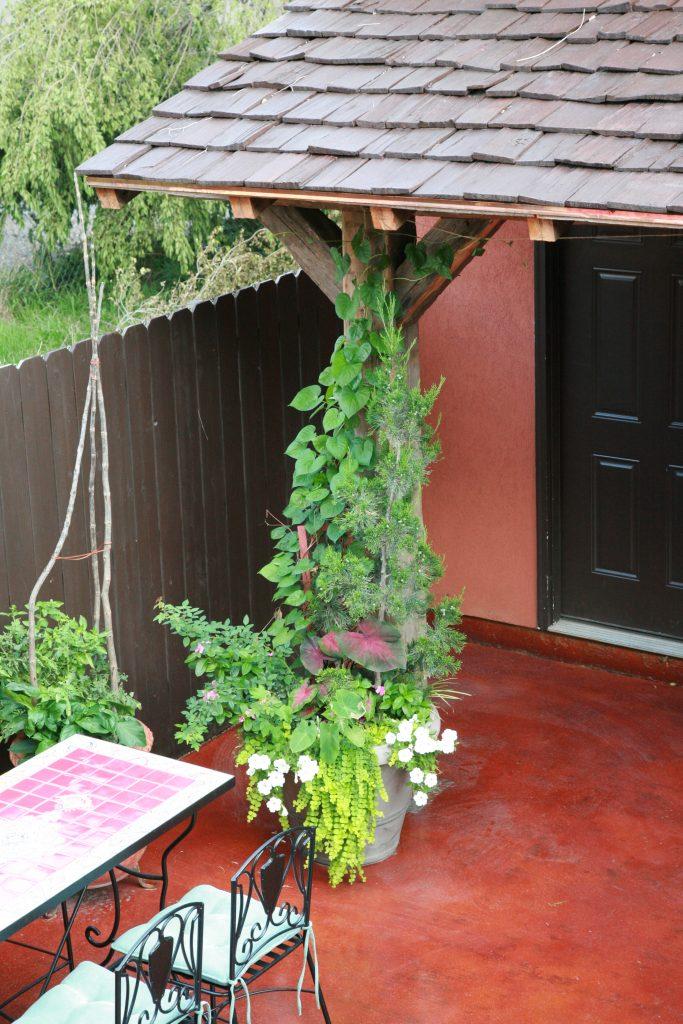 Hanging Plants, Outdoor Garden, Backyard Chicago, Concrete Backyard, Exterior Design Chicago, Hacienda Transformation, Paint The Town Red
